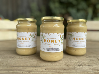 Picture of Local Honey