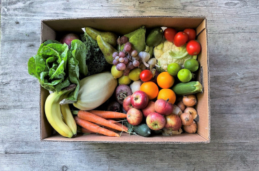 Picture of Choice Giant FRUIT and VEGETABLE Box