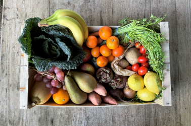 Picture of Choice Large FRUIT and VEGETABLE Box