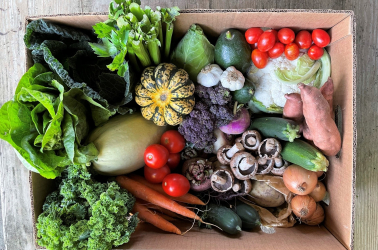 Picture of Choice Super-Giant VEGETABLE Box