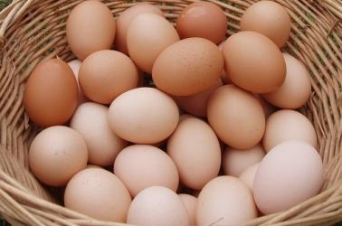 Picture of Eggs MEDIUM