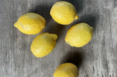Picture of Lemons (3 lemons)